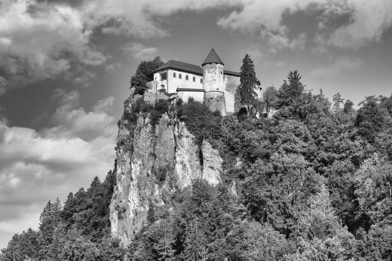 Тряхните замок кровоточенный верхней частью около города Bled в Словении стоковая фотография