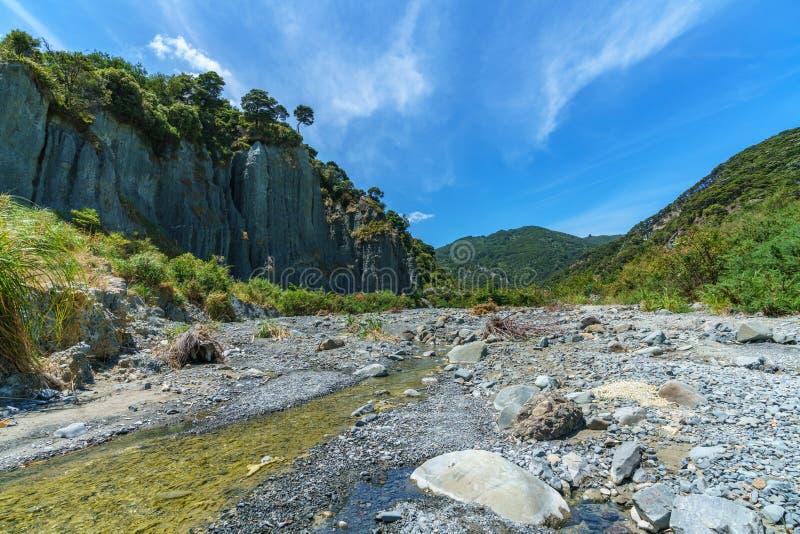 Тряхните иглы на башенках putangirua, wairarapa, Новой Зеландии 2 стоковое изображение rf
