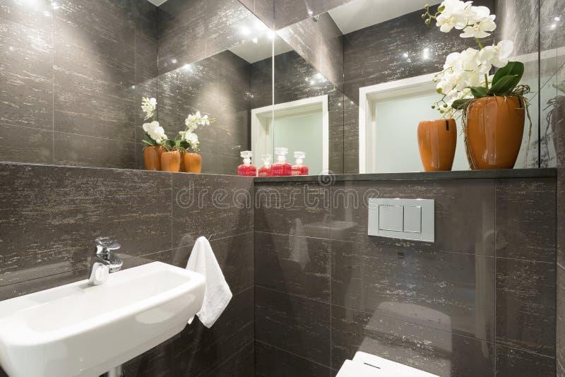 Туалет в современном доме стоковое изображение rf