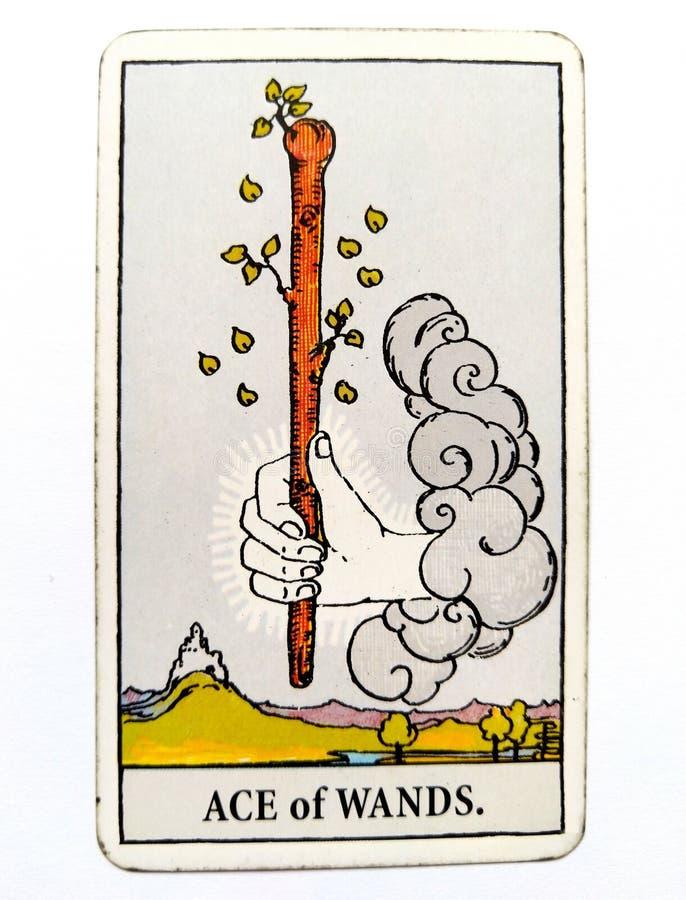 Туз привода карточки Tarot палочек инициативного творческого вдохновляющего, гонора, приключения, Excitemen бесплатная иллюстрация
