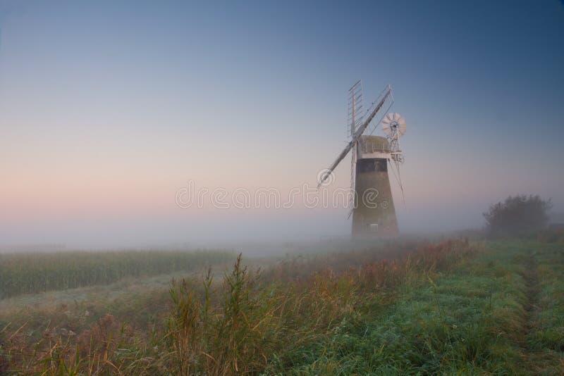 Туманная ветрянка стоковое изображение rf