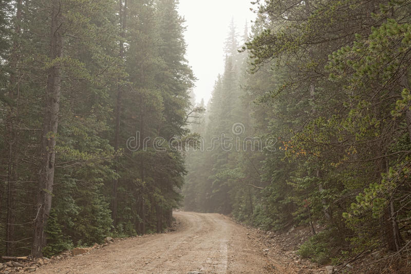туманная дорога стоковые изображения rf