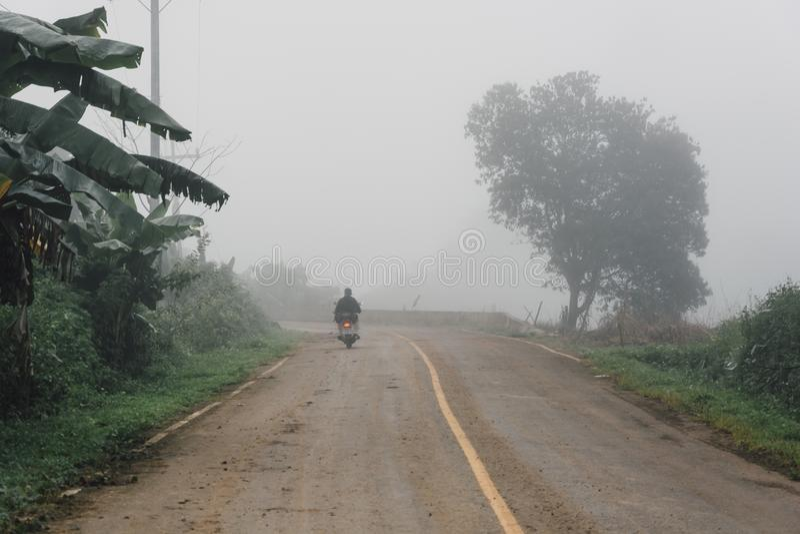 Туманная сельская перспектива шоссе асфальта с белой линией, туманной дорогой, дорогой с движением и густым туманом стоковое изображение rf