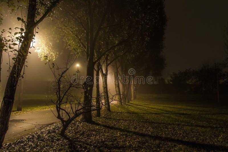 туманнейшая ноча стоковая фотография