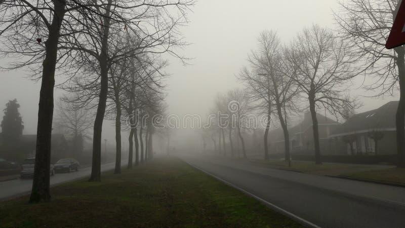 туманнейшая улица стоковые фотографии rf