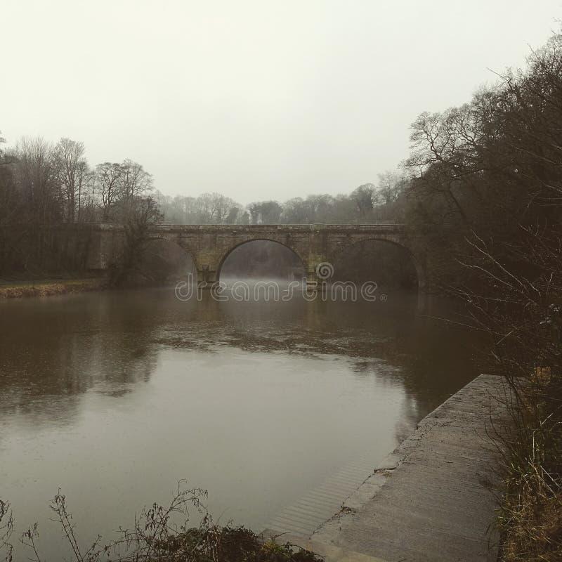 Туманное настроение стоковое изображение rf