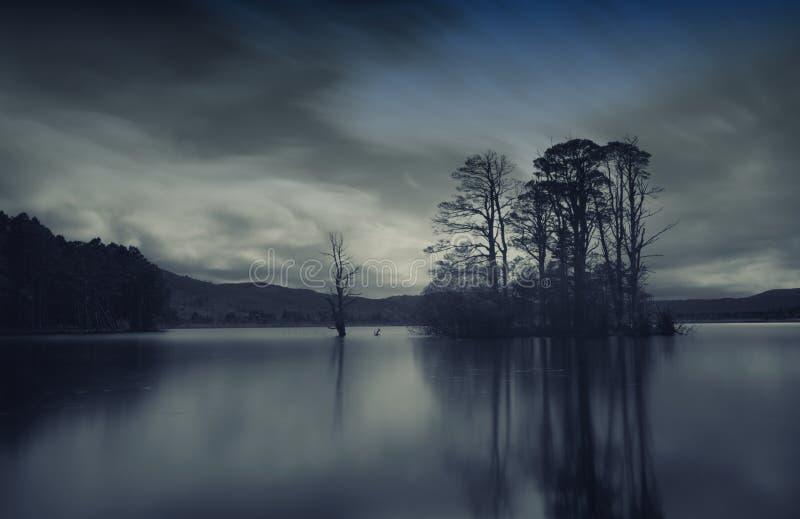 Туманное озеро стоковые фото
