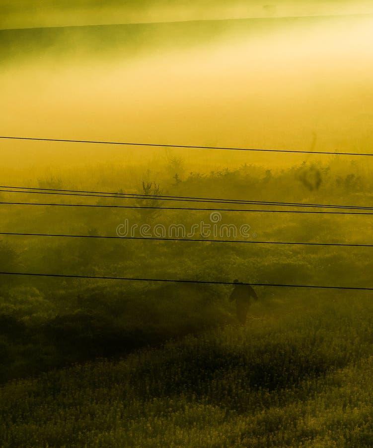 Туманное поле стоковое фото