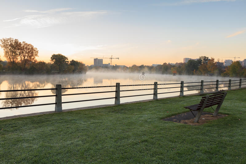 Туманное река в утре стоковые изображения rf
