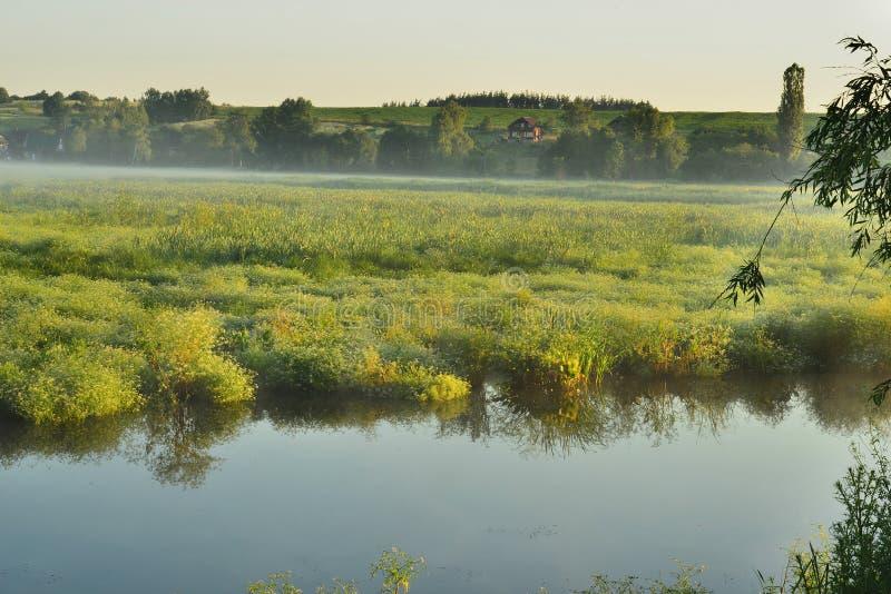 Туманное утро в деревне стоковые фото