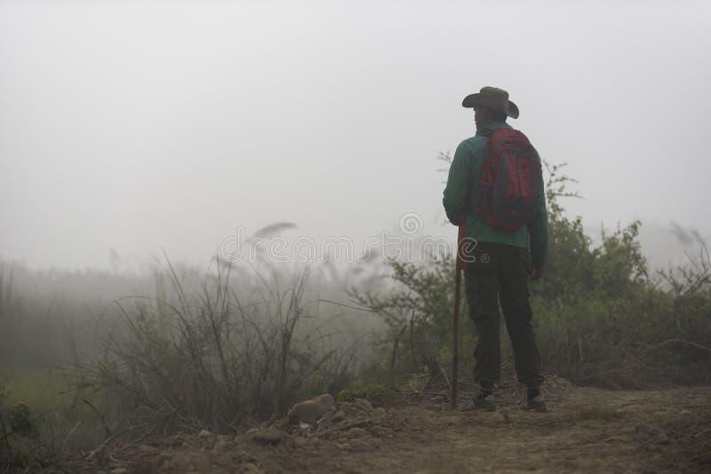 Туманное утро в национальном парке Chitwan стоковые фотографии rf