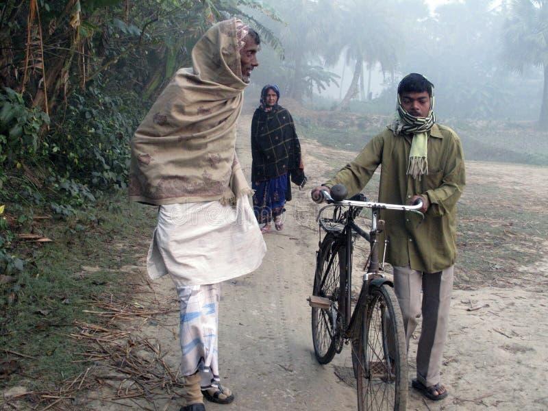 Туманное утро в сельской местности Бенгалии в джунглях Sundarban, западная Бенгалия, Индия стоковое изображение rf