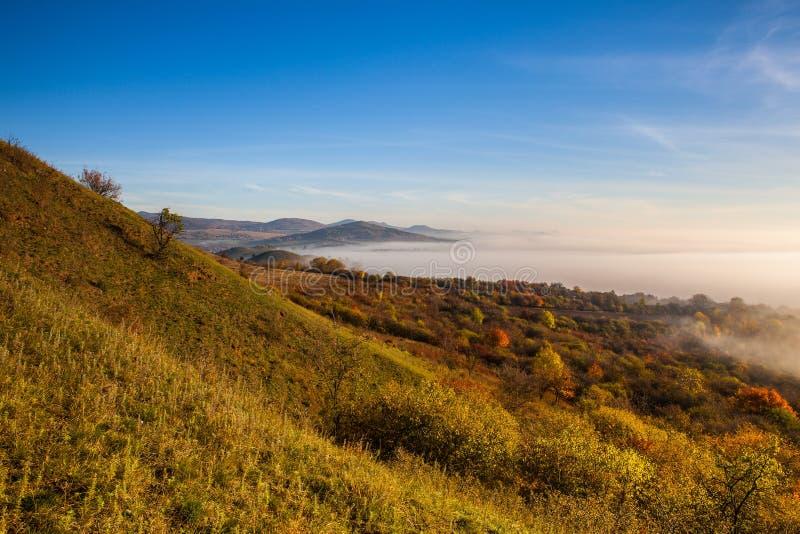 Туманное утро в центральных богемских гористых местностях, чехия стоковое фото