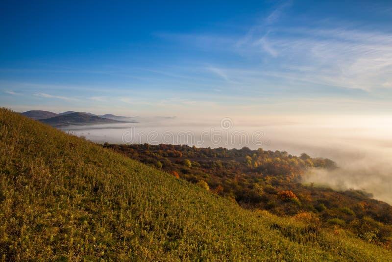 Туманное утро в центральных богемских гористых местностях, чехия стоковые фотографии rf