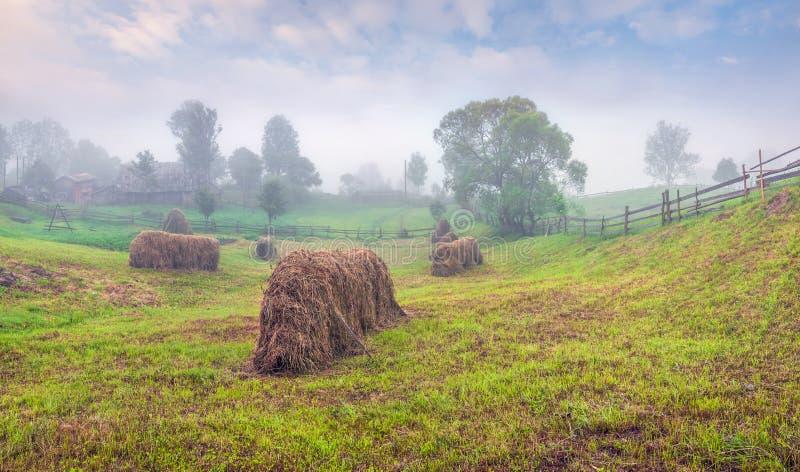 Туманное утро лета в горном селе стоковые фотографии rf