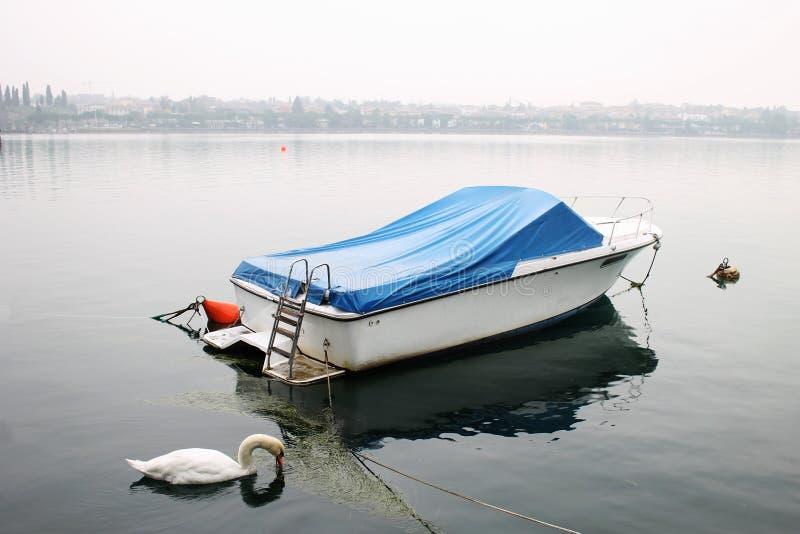 Туманное утро на озере Garda, лебедь, шлюпка, Peschiera del Garda, Италия стоковые изображения rf