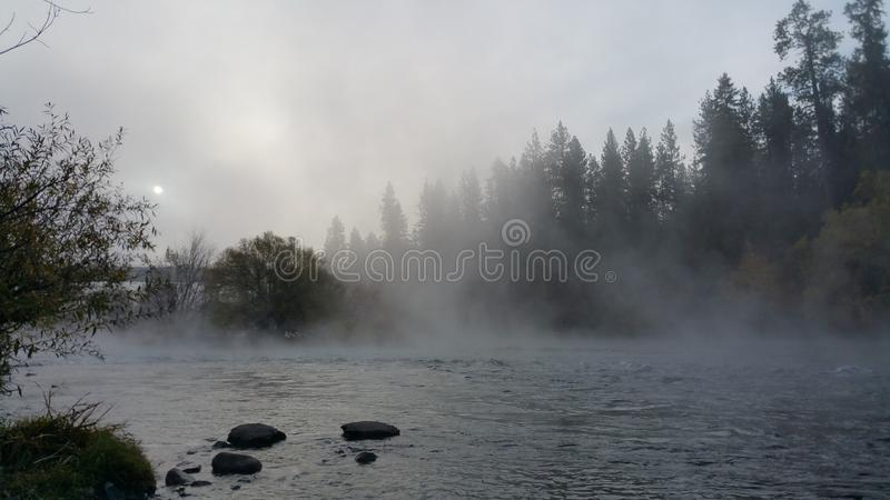 Туманное утро на реке стоковые фото