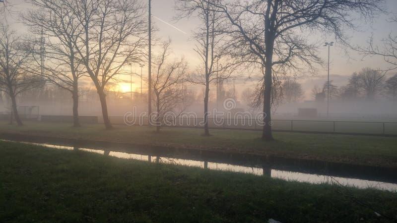 Туманное sportfield в Голландии стоковое изображение rf