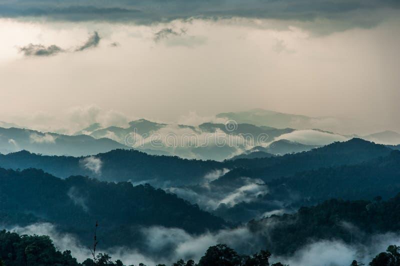 Туманные холмы горы лета стоковые фото