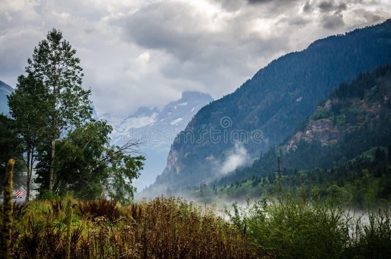Туманный ландшафт в горах стоковое изображение