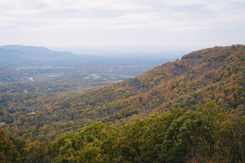 Туманный взгляд осени от привода горизонта в национальном парке Shenandoah, Вирджинии стоковое изображение rf