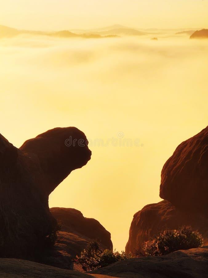 Туманный восход солнца в красивые утесы Пики песчаника увеличенные от туманной предпосылки, туман апельсин должный к лучам солнца стоковое изображение