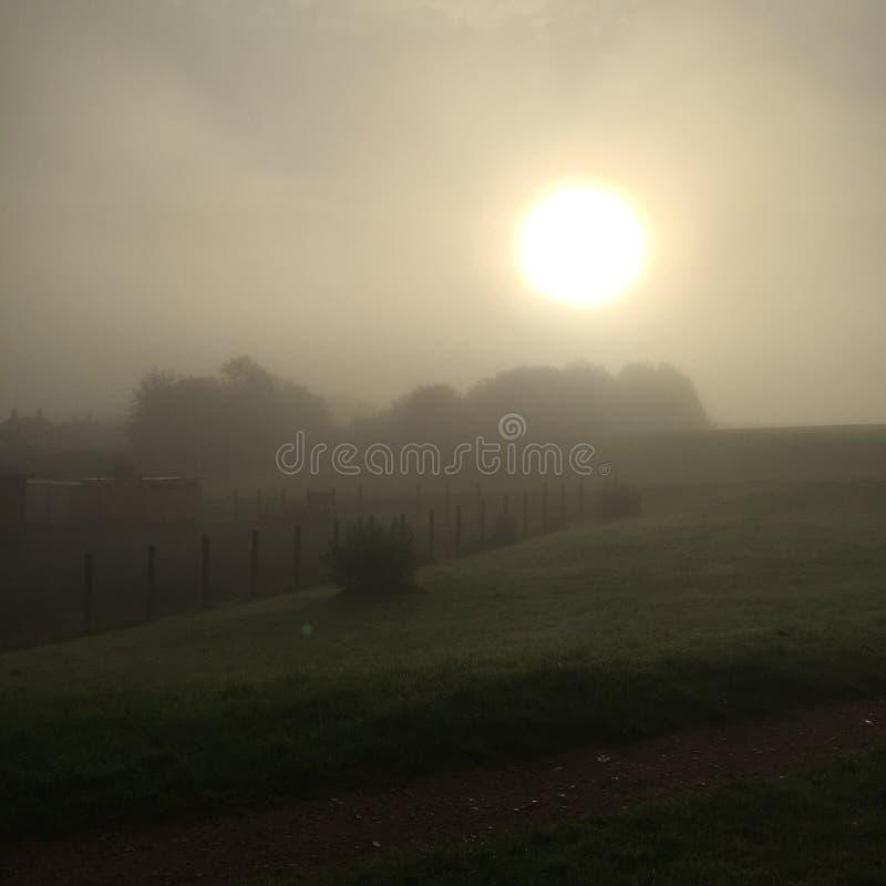 Туманный восход солнца утра стоковые изображения rf