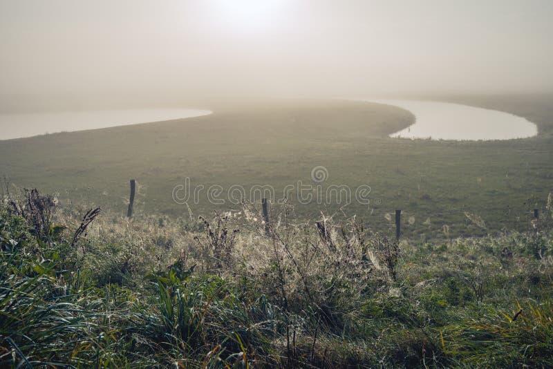 Туманный ландшафт на сезоне раннего утра осенью стоковая фотография rf