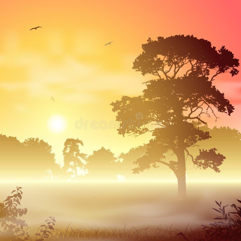 Туманный ландшафт иллюстрация штока