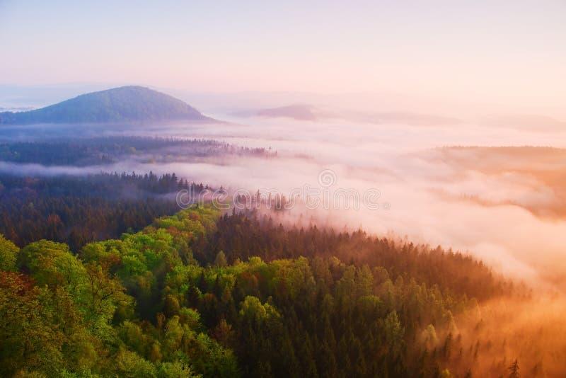 Туманный рассвет в красивые холмы Пики холмов вставляют вне от туманной предпосылки, туман желт и апельсины должный к su стоковое фото rf