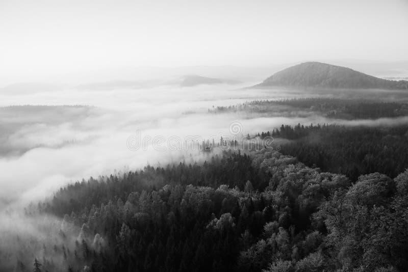 Туманный рассвет в красивые холмы Пики холмов вставляют вне от туманной предпосылки, туман желт и апельсины должный к su стоковые фото