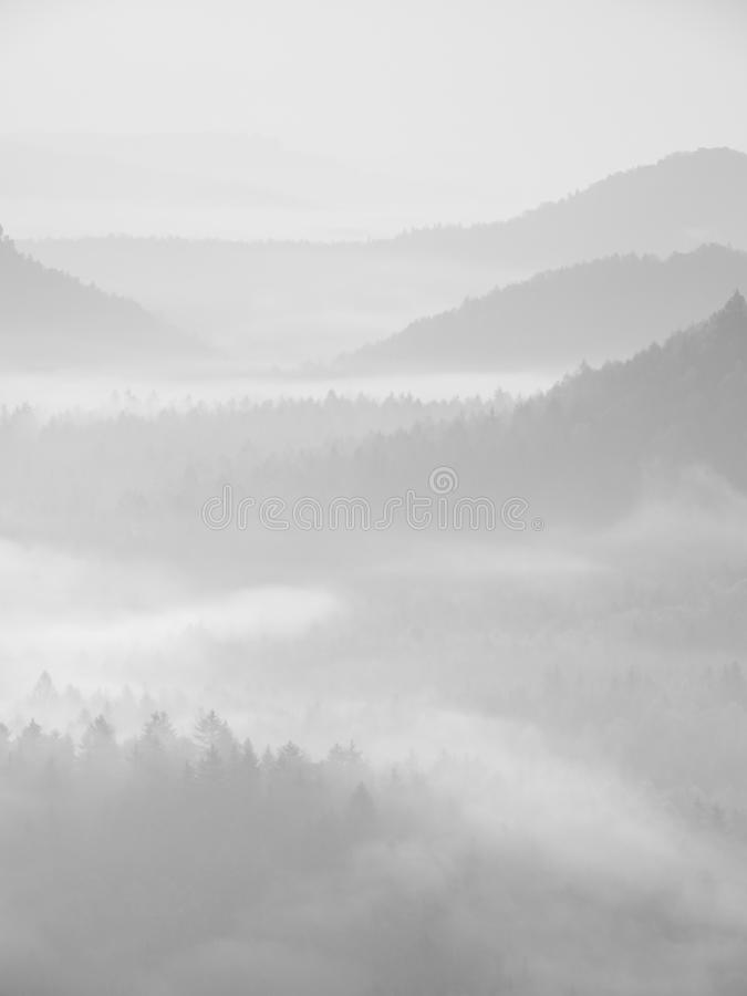 Туманный рассвет в красивые холмы Пики холмов вставляют вне от туманной предпосылки, туман желт и апельсины должный к su стоковое изображение