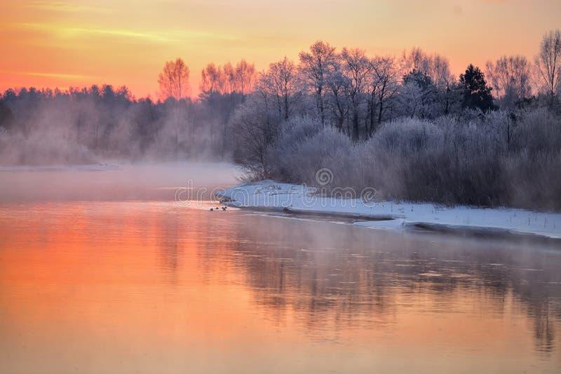 Туманный рассвет зимы на реке стоковые фото