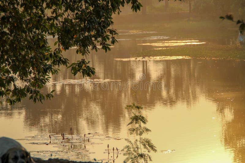 Туманный спуск на реке стоковое изображение