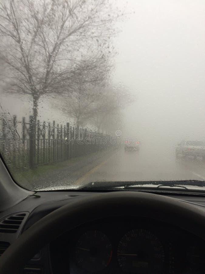 Туман в улице стоковые фото