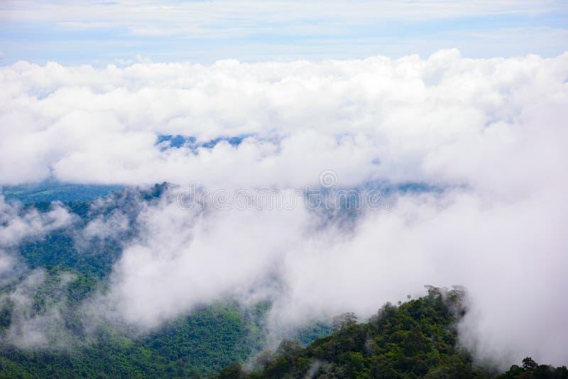 Туман горы сценарный на thongphaphum стоковая фотография rf