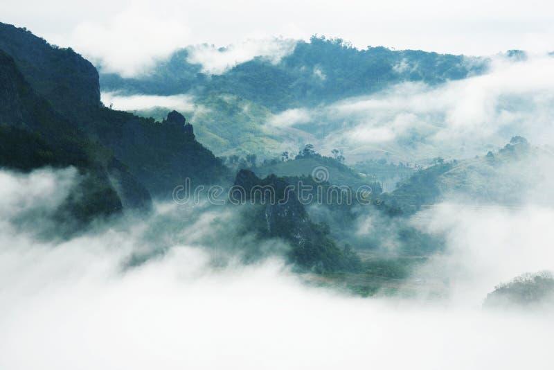 Туман и гора стоковая фотография