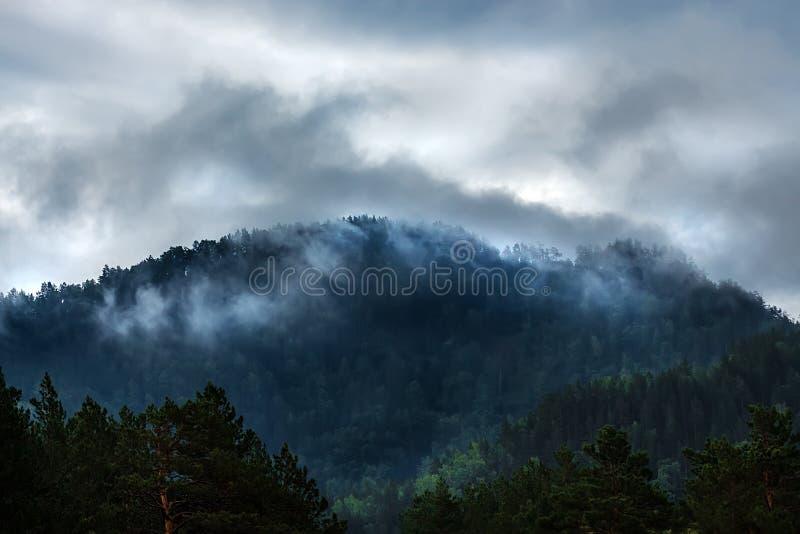 Туман на верхних частях горы Гора Altai стоковые изображения rf