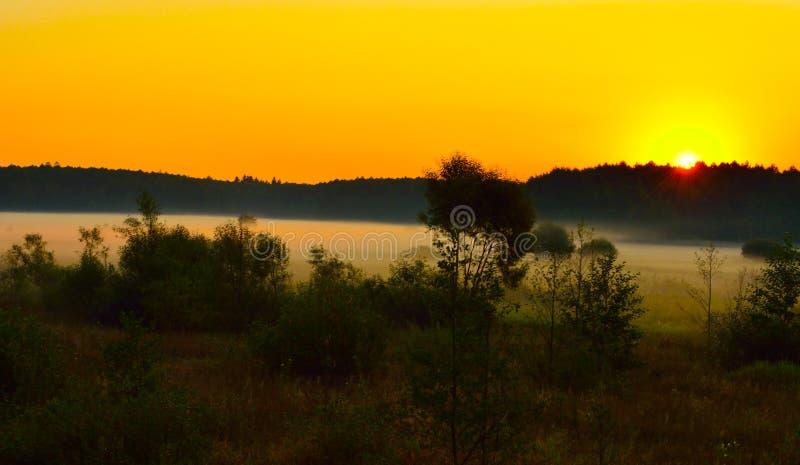 Туман на заходе солнца стоковые фотографии rf
