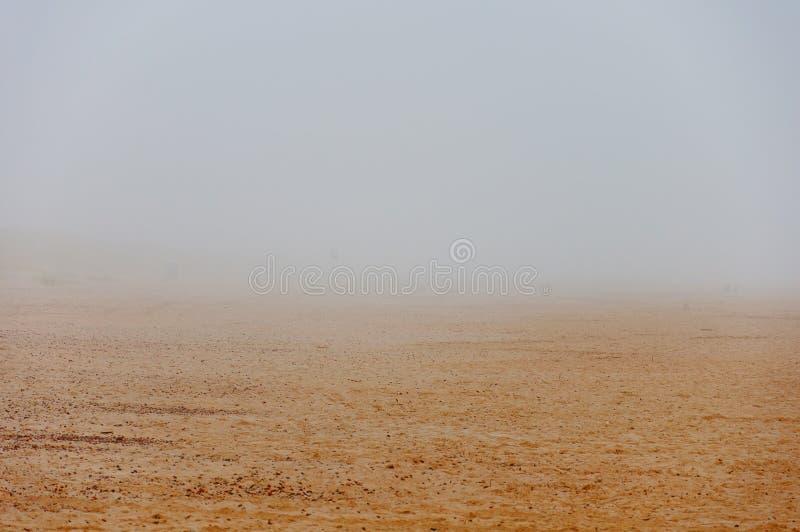Туман на пляже песка стоковая фотография