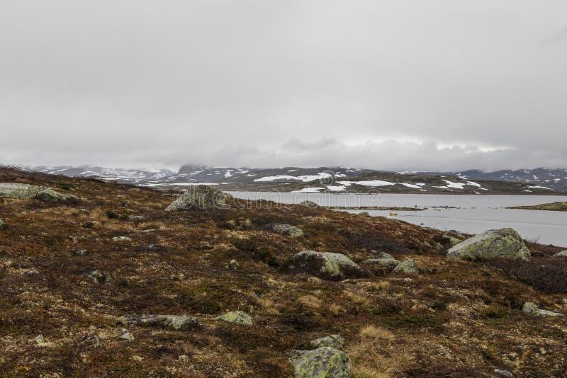 Туман над тундрой стоковое фото rf