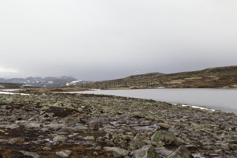 Туман над тундрой стоковые фотографии rf
