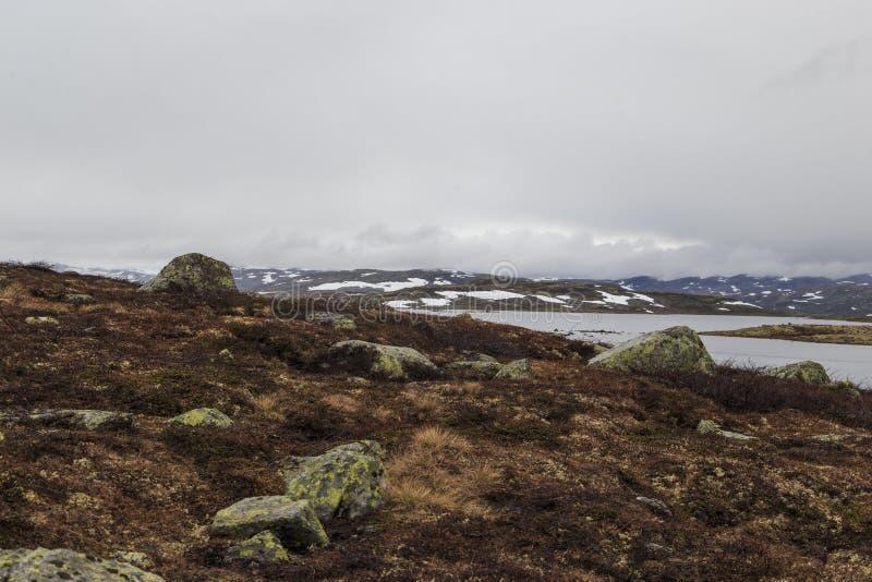 Туман над тундрой стоковое изображение