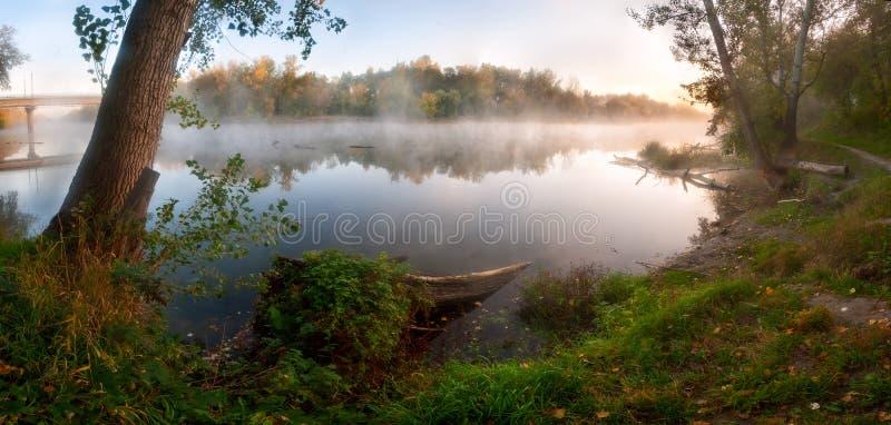 Туман осени над рекой стоковое фото rf