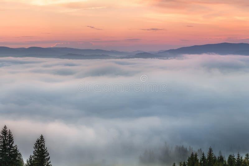 Туман осени Утро осени стоковая фотография