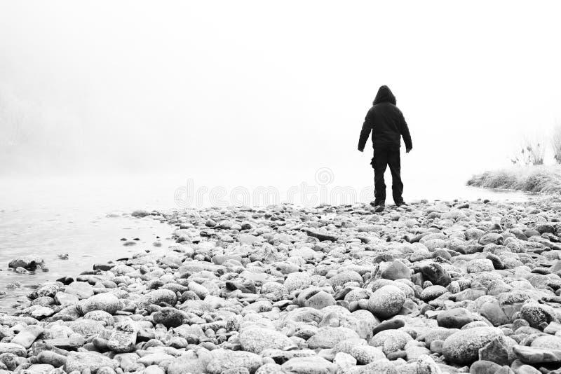 Туман, спокойствие, человек стоковые фотографии rf