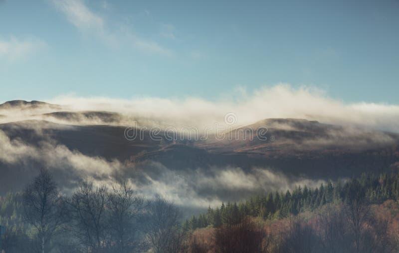 Туман утра над горами и forrest стоковая фотография rf