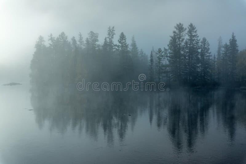 Туман утра на реке Zhombolok стоковые фотографии rf