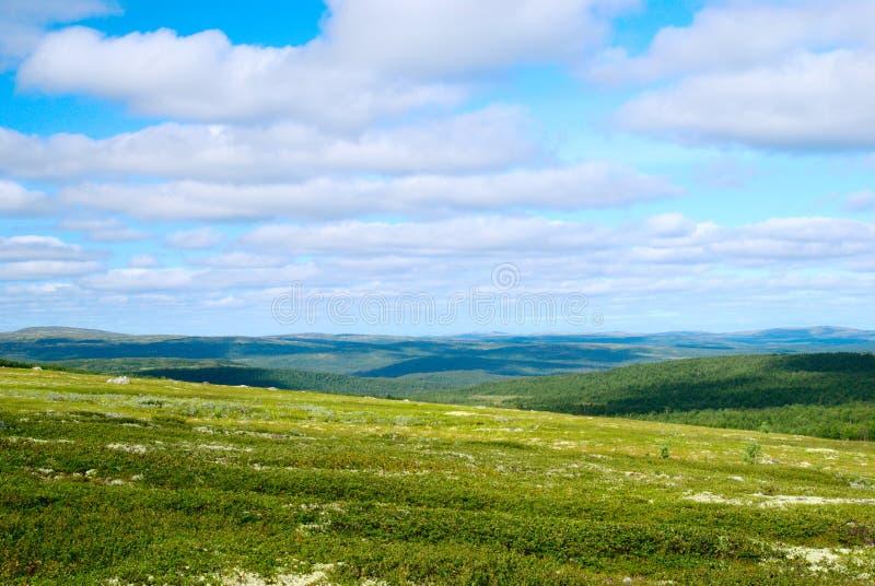 тундра горы стоковая фотография