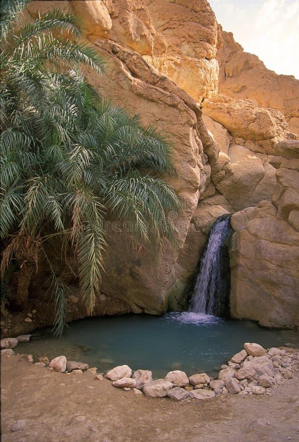 Тунис стоковые фотографии rf
